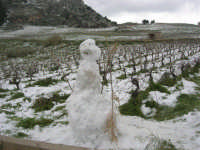 alle pendici del monte Bonifato: neve e pupazzo - 15 febbraio 2009   - Alcamo (2787 clic)