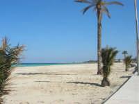 la spiaggia, il mare - 24 febbraio 2008   - San vito lo capo (612 clic)