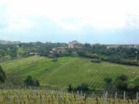 campagna alcamese e case di periferia - 23 febbraio 2009   - Alcamo (2440 clic)