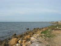 la costa, uno sguardo verso Trapani - 27 gennaio 2008   - Marausa lido (1979 clic)