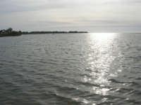 Riserva delle Isole dello Stagnone di Marsala - riflessi di sole - 17 febbraio 2007   - Marsala (1209 clic)