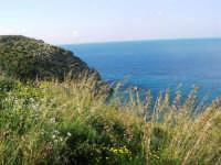 il litorale e le calette tra Castellammare e Guidaloca - 1 maggio 2007  - Castellammare del golfo (660 clic)
