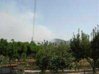 Incendio sul Monte Bonifato (3) - 23 agosto 2007  - Alcamo (785 clic)