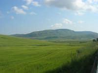 la campagna a primavera - all'orizzonte la Montagna Grande - 3 maggio 2009  - Bruca (6634 clic)