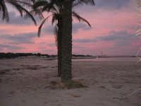 rosa tramonto, guardando verso il faro - 27 gennaio 2008  - San vito lo capo (751 clic)
