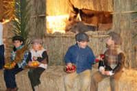 Presepe Vivente presso l'Istituto Comprensivo A. Manzoni, animato da alunni della scuola e da anziani del paese - dinanzi alla grotta della natività - 20 dicembre 2007   - Buseto palizzolo (887 clic)