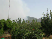 Incendio sul Monte Bonifato (6) - 23 agosto 2007  - Alcamo (1069 clic)
