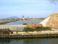 Riserva delle Isole dello Stagnone di Marsala - Salina Infersa - 17 febbraio 2007   - Marsala (1376 clic)