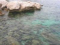 mare e scogli - 19 aprile 2008   - Scopello (675 clic)
