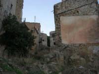 ruderi del paese distrutto dal terremoto del gennaio 1968 - 2 ottobre 2007  - Poggioreale (1027 clic)