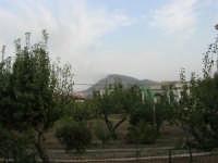 Incendio sul Monte Bonifato (10) - 23 agosto 2007  - Alcamo (770 clic)