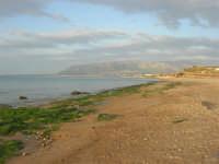 spiaggia di levante - golfo di Castellammare - 1 marzo 2009   - Balestrate (3364 clic)
