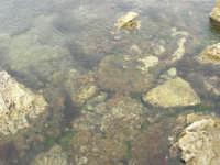 Capo Lilybeo: scogli ed acqua bassa - 24 settembre 2007  - Marsala (1191 clic)