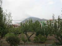 Incendio sul Monte Bonifato (11) - 23 agosto 2007  - Alcamo (1013 clic)