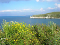 il litorale tra Castellammare e Guidaloca - 1 maggio 2007  - Castellammare del golfo (738 clic)