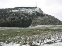 alle pendici del monte Bonifato innevato - 15 febbraio 2009   - Alcamo (2412 clic)