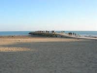 spiaggia e passeggiata sul mare - 6 aprile 2008   - Marinella di selinunte (2501 clic)