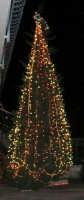 l'albero di Natale addobbato da Giacomo Pecoraro - 8 dicembre 2006   - Alcamo (3230 clic)