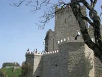 Torri medievali - 1 maggio 2008    - Erice (800 clic)