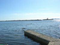 volo di gabbiani, il faro e le isole Egadi dal piccolo molo del Villino Nasi - 6 settembre 2007  - Trapani (1068 clic)