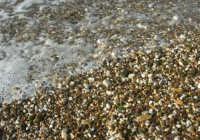 Spiaggia Plaja - bagnasciuga - 3 marzo 2009  - Castellammare del golfo (2504 clic)