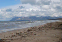C/da Canalotto -13 febbraio 2009   - Alcamo marina (2412 clic)