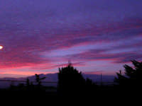 Lo spettacolo della natura all'alba (2) - 18 febbraio 2006  - Alcamo (1264 clic)