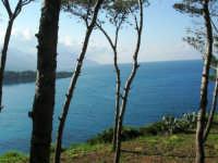 la baia di Guidaloca - 1 maggio 2007  - Castellammare del golfo (635 clic)
