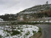 alle pendici del monte Bonifato innevato - 15 febbraio 2009   - Alcamo (2411 clic)