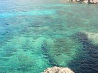 Golfo del Cofano: mare stupendo - 24 febbraio 2008  - San vito lo capo (526 clic)