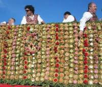 Festa della Madonna di Tagliavia - 4 maggio 2008   - Vita (674 clic)