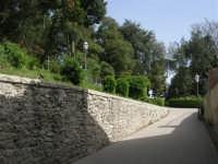 Villa comunale Balio - 1 maggio 2008   - Erice (814 clic)