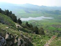 panorama: gregge di pecore sul dirupo e lago artificiale di Chiusa Sclafani - 23 aprile 2006   - Prizzi (2696 clic)