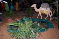 Presepe Vivente curato dall'Istituto Comprensivo G. Pascoli (20) - 22 dicembre 2007  - Castellammare del golfo (603 clic)