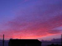 Lo spettacolo della natura all'alba (5) - 18 febbraio 2006  - Alcamo (1170 clic)