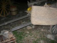 Il Presepe Vivente di Custonaci nella grotta preistorica di Scurati (grotta Mangiapane) (167) - 26 dicembre 2007   - Custonaci (1170 clic)