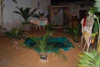 Presepe Vivente curato dall'Istituto Comprensivo G. Pascoli (21) - 22 dicembre 2007  - Castellammare del golfo (625 clic)