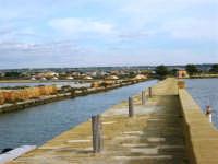Riserva delle Isole dello Stagnone di Marsala - Salina Infersa - Imbarcadero per l'Isola di Mozia - 17 febbraio 2007   - Marsala (7642 clic)