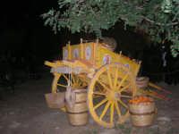 Il Presepe Vivente di Custonaci nella grotta preistorica di Scurati (grotta Mangiapane) (168) - 26 dicembre 2007   - Custonaci (1122 clic)