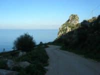la strada che porta alla tonnara - 3 marzo 2008   - Scopello (929 clic)