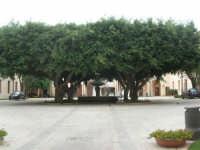 ex Quartiere Spagnolo, attuale sede del Palazzo del Comune: l'atrio con alberi e fontana - 24 settembre 2007  - Marsala (994 clic)