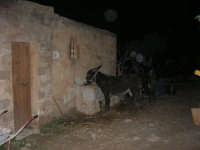 Il Presepe Vivente di Custonaci nella grotta preistorica di Scurati (grotta Mangiapane) (169) - 26 dicembre 2007   - Custonaci (1016 clic)