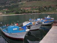al porto le barche dei pescatori - 17 aprile 2006  - Castellammare del golfo (760 clic)