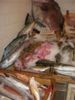 Pescheria Randazzo in via Guglielmo Marconi: vari pesci esposti sul banco - 21 luglio 2007   - Castellammare del golfo (2002 clic)