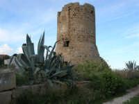 torre saracena - 4 gennaio 2007  - Torretta granitola (4249 clic)
