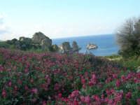 i faraglioni - 1 maggio 2007  - Scopello (840 clic)