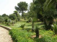 giardino del Baglio Trinità - 22 aprile 2007    - Castelvetrano (837 clic)