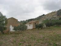 case rurali alle pendici del monte Bonifato - 15 febbraio 2009   - Alcamo (2367 clic)