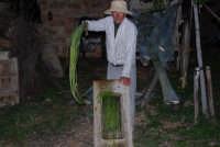 Il Presepe Vivente di Custonaci nella grotta preistorica di Scurati (grotta Mangiapane) (6) - 26 dicembre 2007  - Custonaci (1197 clic)