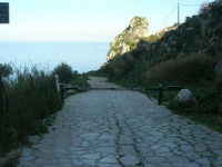 la strada che porta alla tonnara - 3 marzo 2008   - Scopello (705 clic)